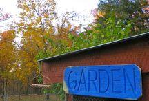Gardening / by Erika Dennett