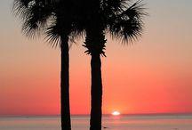 Sunrises & Sunsets / by Wendy L. Crane
