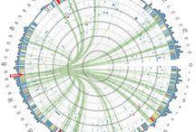 data visualization / by Ryan Jefferson Hays