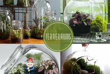 plants and gardening / by Patti Lane