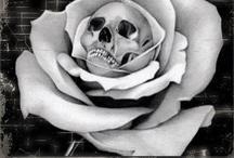 Skulls / by Kim Kelly