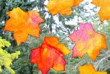 Fall Fun / by Trisha Brummels