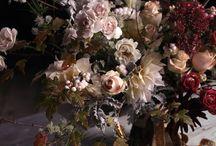 Kate brackenborough / by That Flower Shop