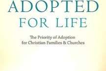 Adoption things / Articles, pictures, and quotes with an adoption theme. / by Carrie Honeycutt