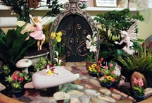 fairy gardens / by Chris Vezina