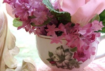 Teacup Treasures / by Domestic Diva
