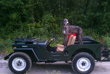 Willys Jeep / by Kaiser Willys Auto Supply