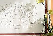 Genealogy / overview-  / by Darcy S