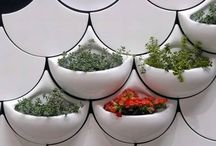 Gardening Indoors / by Connie Butner