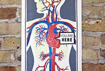 Anatomy Meets Design & Art / by Jana Miller