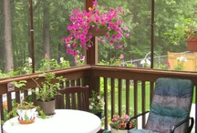 Sun porches / by Holly Means Hoppe