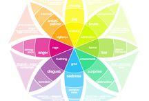 Web Design / by Lucidity Digital