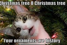 Merry Little Christmas Ideas / by Black Bird