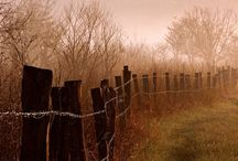 Peaceful  / by Linda Bishop Brown
