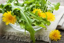Herbs / Buone belle ed utili :-) / by Oluha