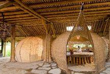 bambu / by marcio mattos