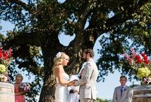 Dream wedding / by Michelle