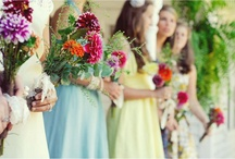 Wedding Color: COLOR Burst!! / by Lizzy A.