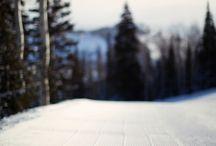 Ski  / by Rabbit Ridge Farm (Jordan Charbonneau)