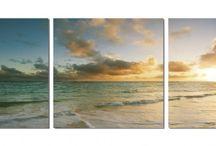 Beach Photos / by Matthew Sully