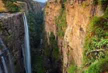 Africa  / by Hannah Illges