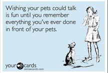 Pets / by Regina Logue