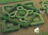 Garden / by Holly Zollinger Millward