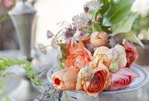 Garden/Outdoor Wedding Ideas / by MODwedding