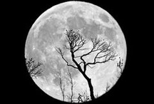 The Glorious Moon & Her Cycles / by Inner Sight | Isha Lerner Enterprises