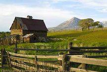 Country Living / by Carolyn Prescott