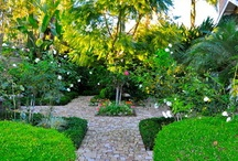 Dreamy Gardens / Landscape inspirations / by Jeannie Perry Baker