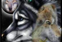 Wolf Pack / by Megan Holland