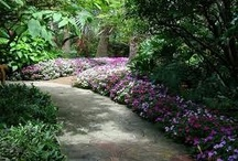 Wedding Venue - Sunken Gardens / by Virginia Bishop