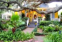 Southern Hospitality  / Some of the best places for a traveler in the United States of American exist in the southern states like Georgia, the Carolinas, Louisiana, etc. We'll be pinning our favorite places here! Mardi Gras anyone? / by Expedia