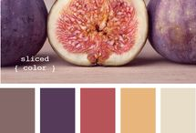 Color Palettes / by Laura Ferioli
