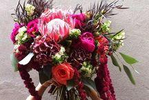 Flowers / by clau espinoza