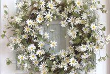 Wreaths / by Lucy Robinson Rosenberg