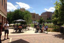Icecream Social / Icecream social 2013 / by Health Sciences Library, Anschutz Medical Campus, University of Colorado
