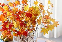 November Palette: Pretty Persimmon / Find fabulous color inspiration from BHG and bloggers based off of the color story in our November 2014 issue! / by Better Homes and Gardens