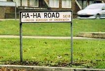 Neighborhood Finds / by Yaya
