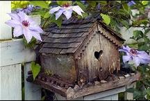 Bird houses / by Deb Bahr