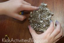 Homeschool Science and Nature / by Natalia