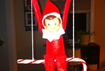 Elf Tom foolery   / Naughty fun with the Christmas Elf / by Tori Parisi