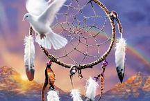 Dream Catchers............... / by Belinda Falgout
