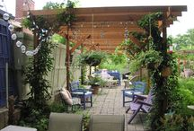 Side Yard/Deck/Arbor Area / by Morgan