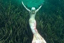 Mermaids / by Sydney Lazaros