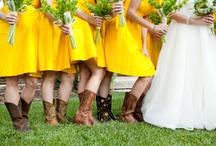 Wedding photography / by Randee Craghead