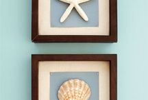 shells / by Karen Huett