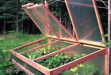 Gardening / by Karla Braucks