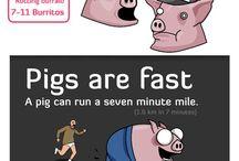 my piggy page / by Pam Goldbach